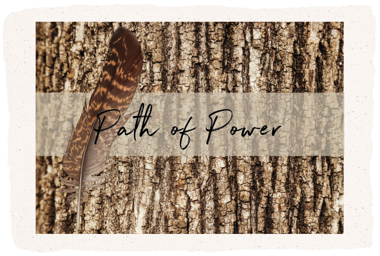 Feather and bark, Path of Power, shamanic workshop retreat